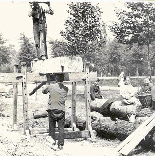 kraanzagers roon 1900
